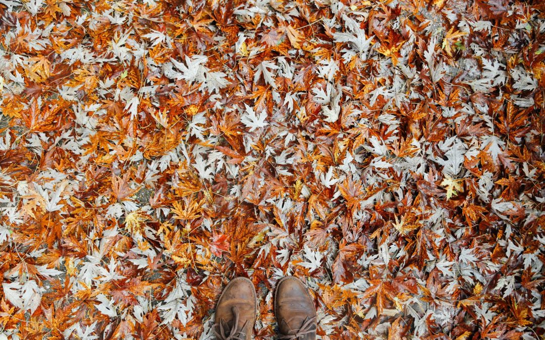 Five Things to Deep Clean For Fall