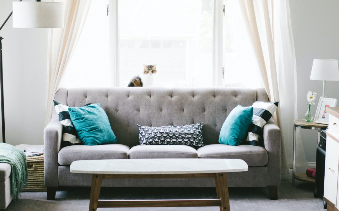 How To Keep Your Upholstery Looking New